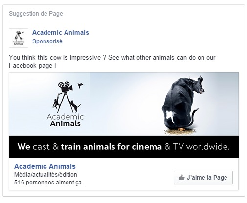 exemple publicite facebook pour academic animals